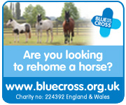 Blue Cross (Worcestershire Horse)