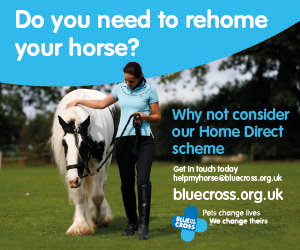 Blue Cross 2020 A (Worcestershire Horse)