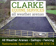 Clarke Equine Services  2018 (Worcestershire Horse)